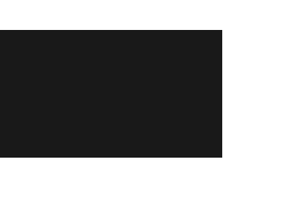 PROFESSIONAL ADVISERS STAFF